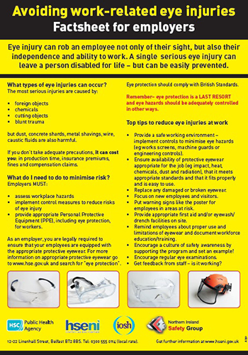 Avoiding Work Related Eye Injuries Factsheet For Employers A4